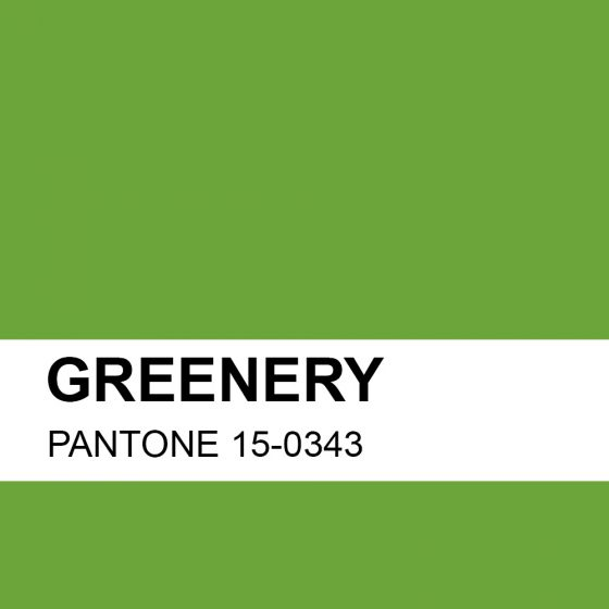 Couleur verte tendance 2017