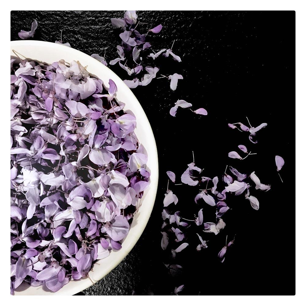 manger des fleurs de glycine