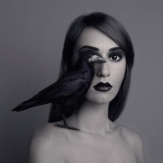 Flora Borsi corbeau Animaleyed
