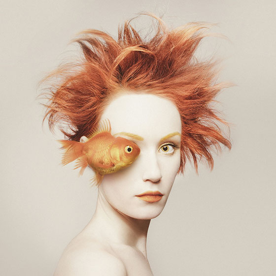 Flora Borsi poisson Animaleyed