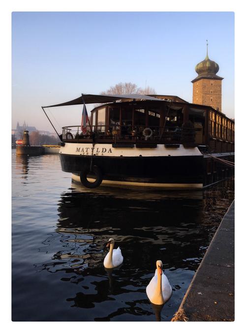 bateau Matylda quai Masaryk Prague